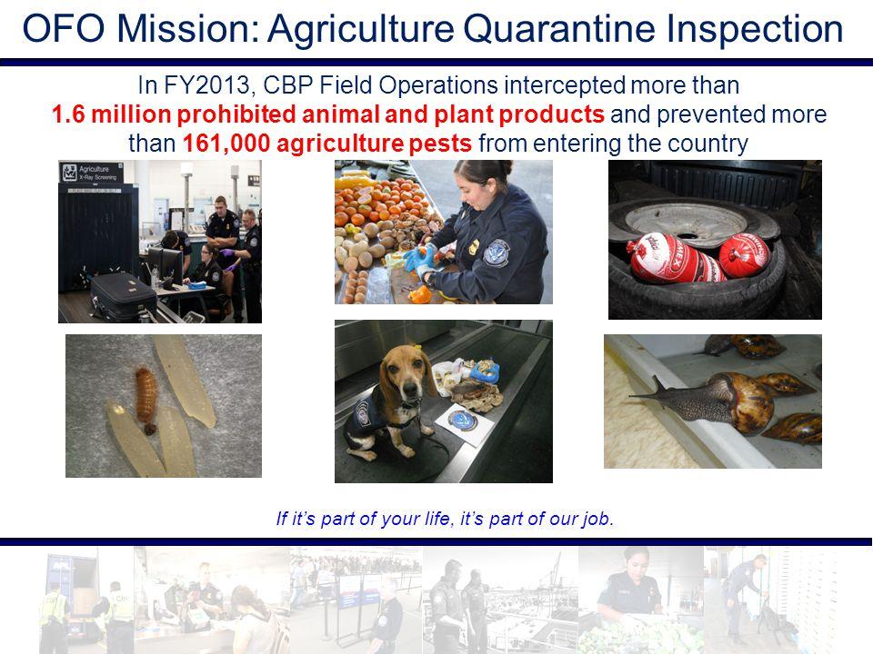 OFO Mission: Agriculture Quarantine Inspection