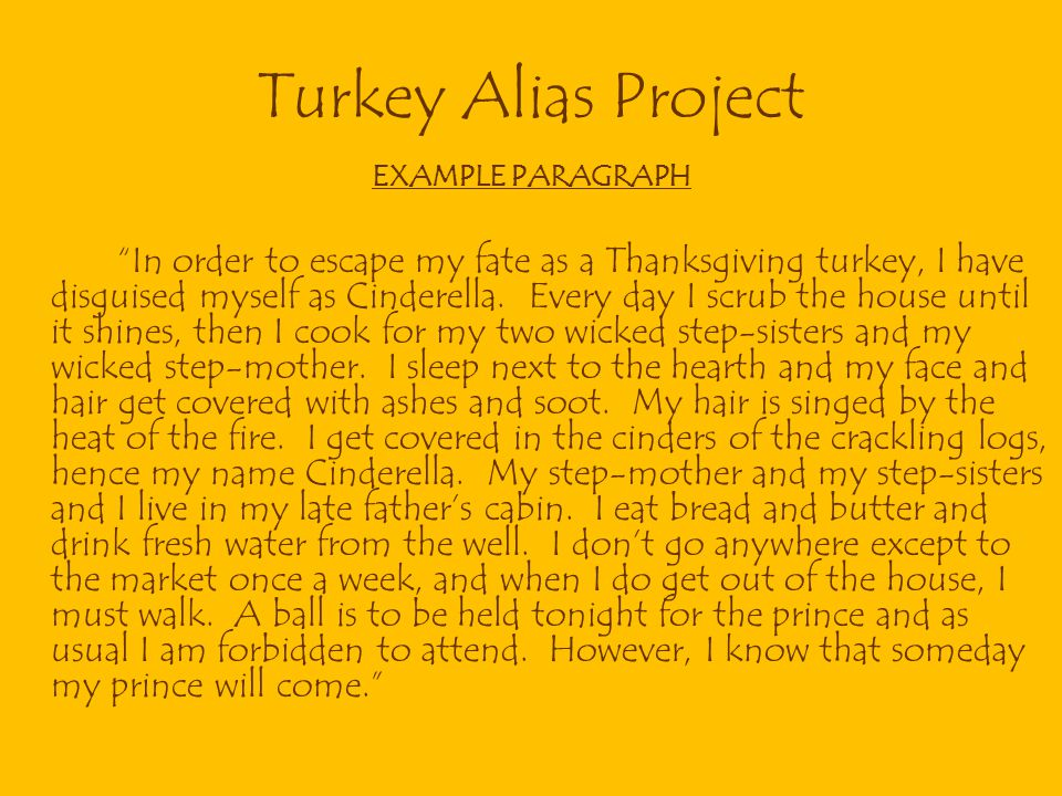 Turkey Alias Project EXAMPLE PARAGRAPH.