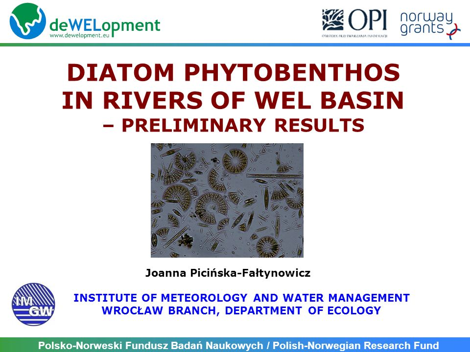 DIATOM PHYTOBENTHOS IN RIVERS OF WEL BASIN