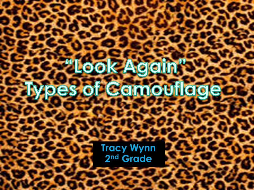Look Again Types of Camouflage