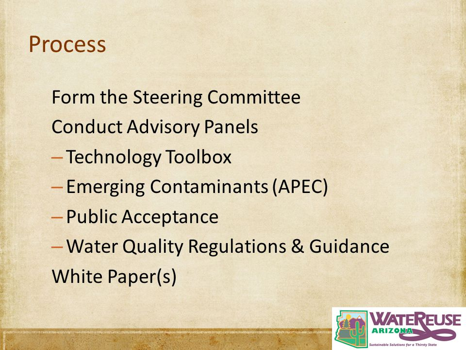 Process Form the Steering Committee Conduct Advisory Panels