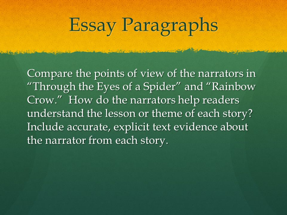 Essay Paragraphs