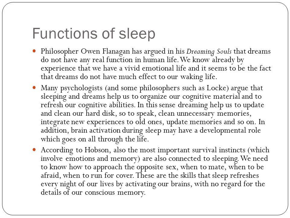 Functions of sleep