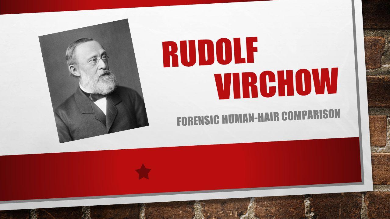 forensic human-hair comparison