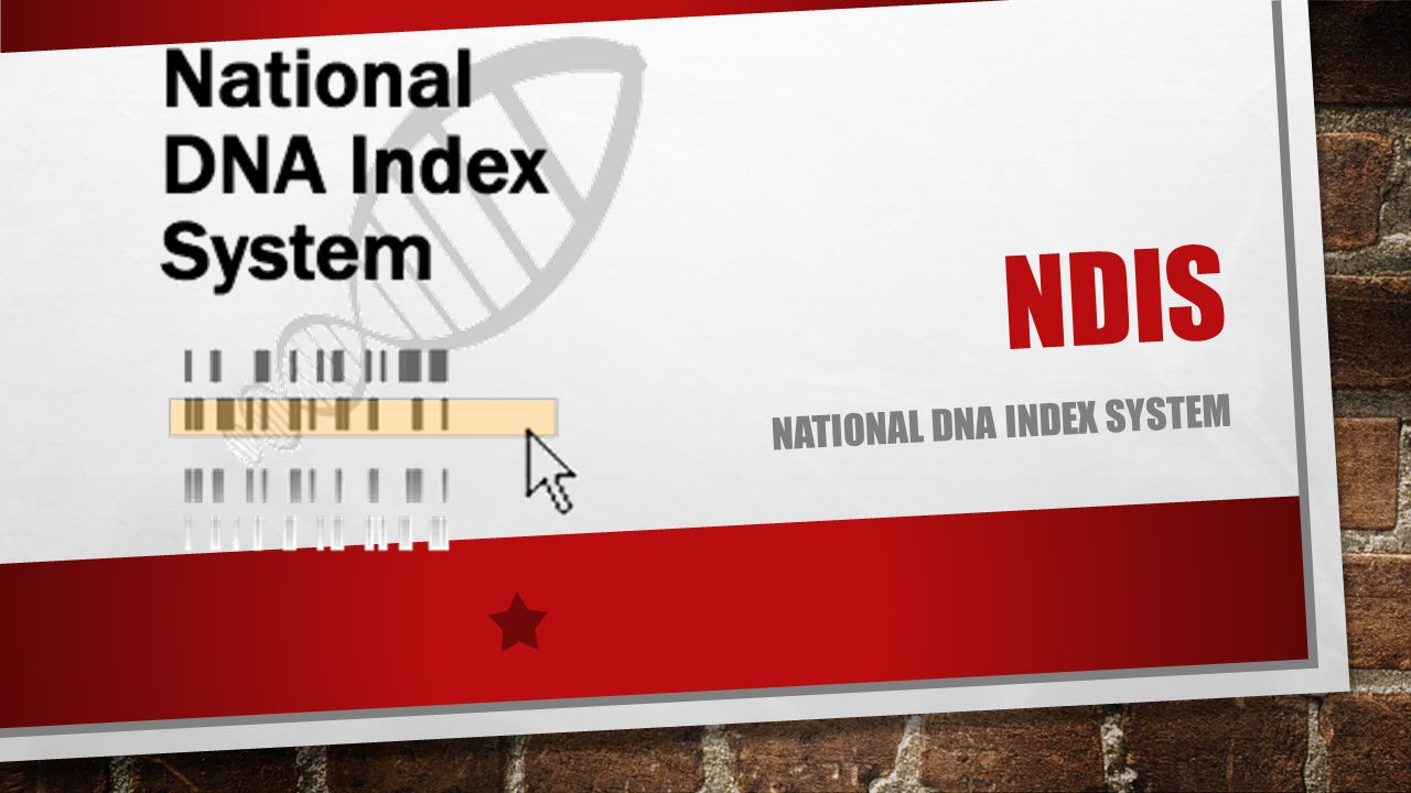 National DNA Index System