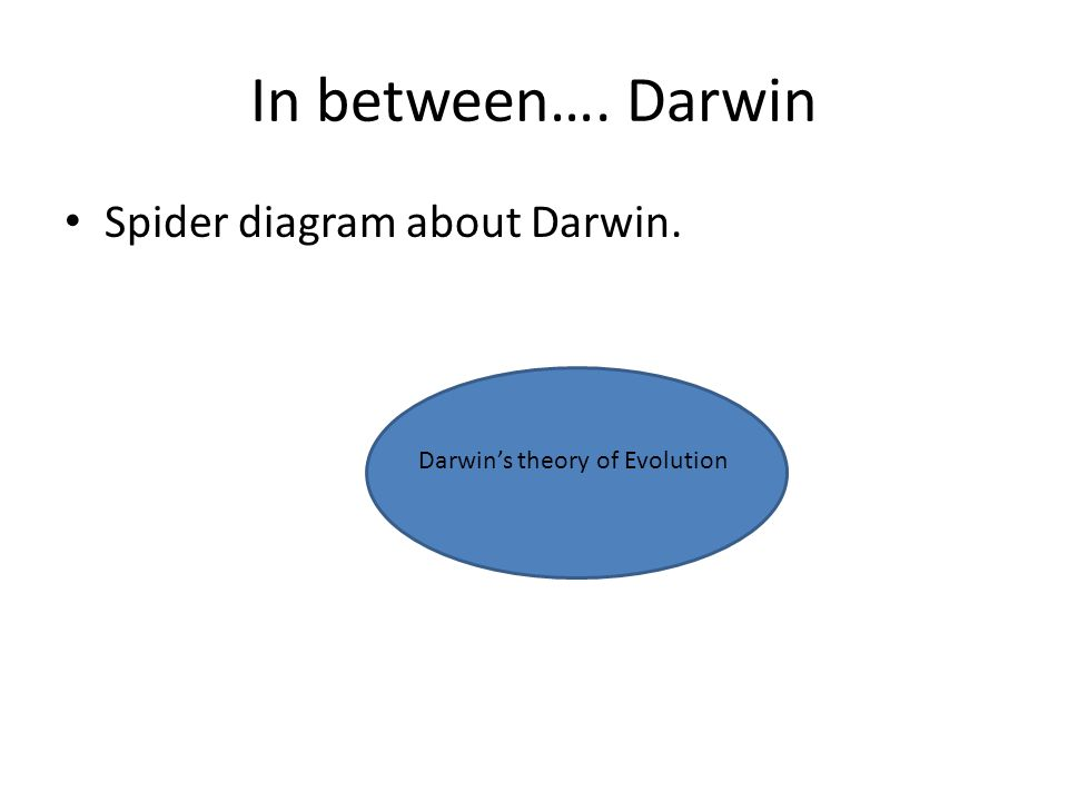 In between…. Darwin Spider diagram about Darwin.
