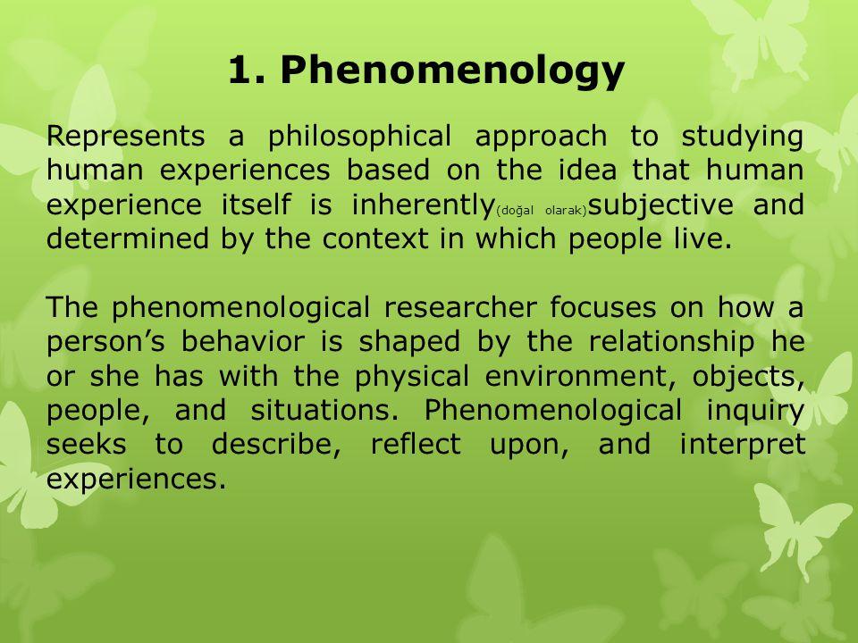 1. Phenomenology