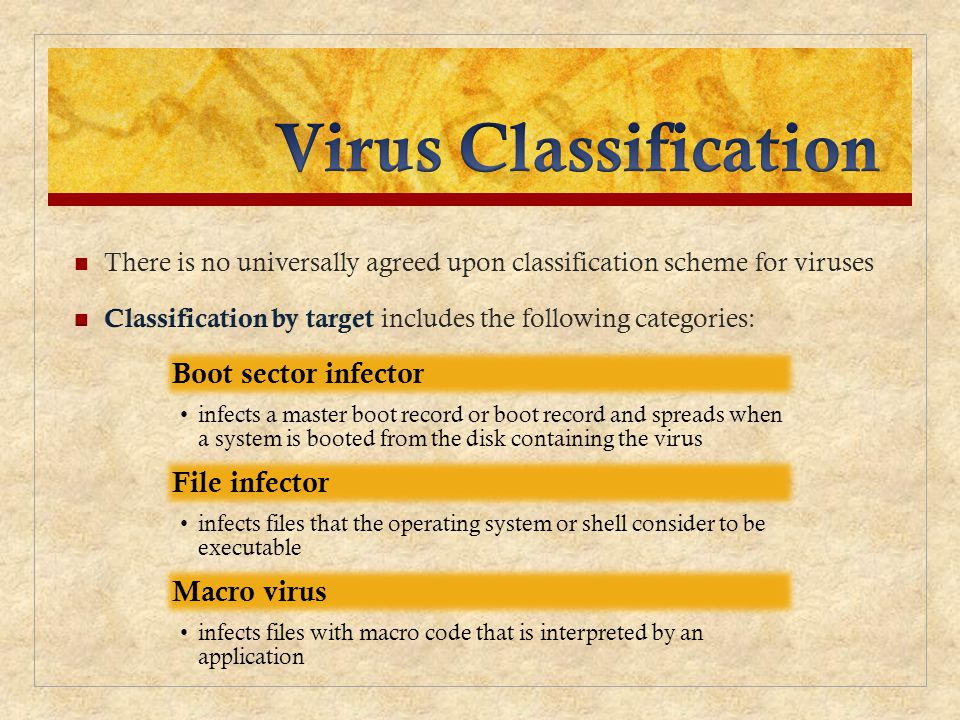 Virus Classification Boot sector infector File infector Macro virus