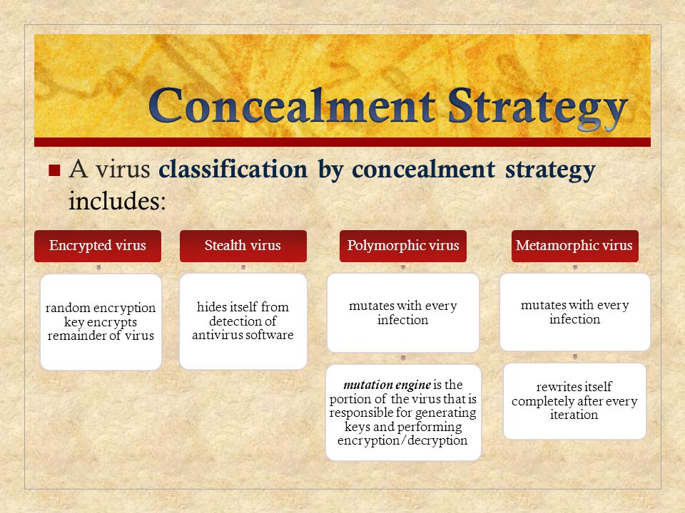 Concealment Strategy A virus classification by concealment strategy includes: Encrypted virus. random encryption key encrypts remainder of virus.
