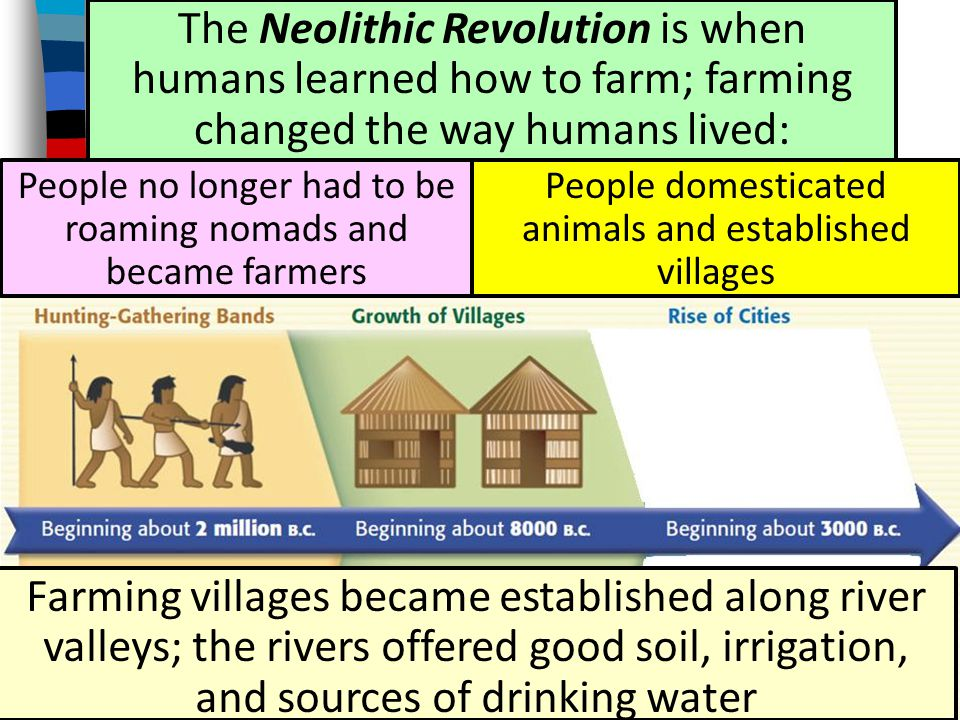 Neolithic Revolution The Neolithic Revolution is when humans learned how to farm; farming changed the way humans lived: