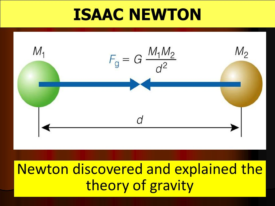 Newton discovered and explained the theory of gravity