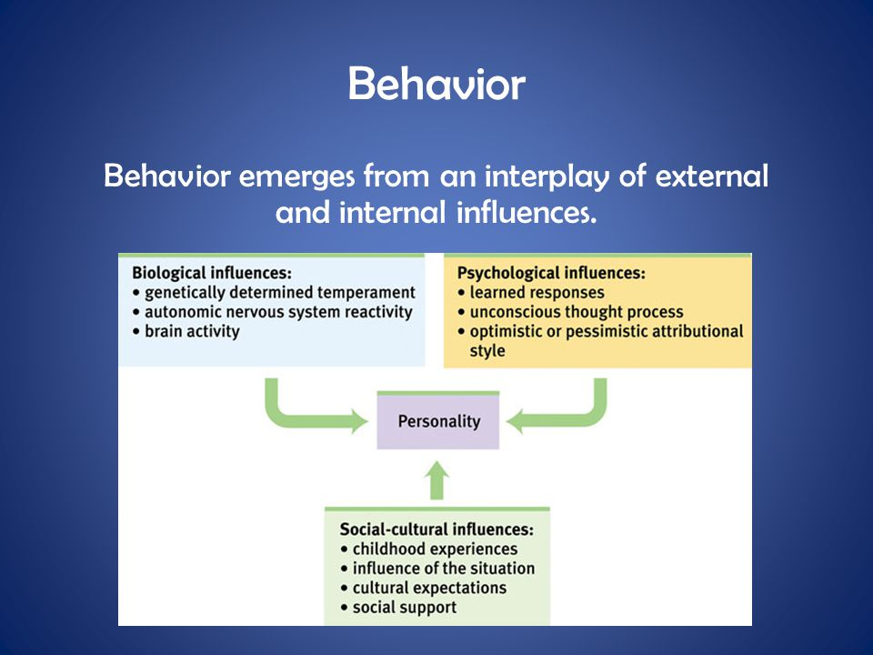 Behavior Behavior emerges from an interplay of external and internal influences.