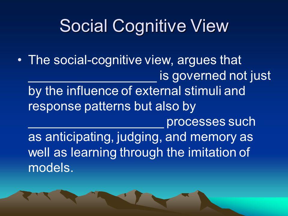 Social Cognitive View