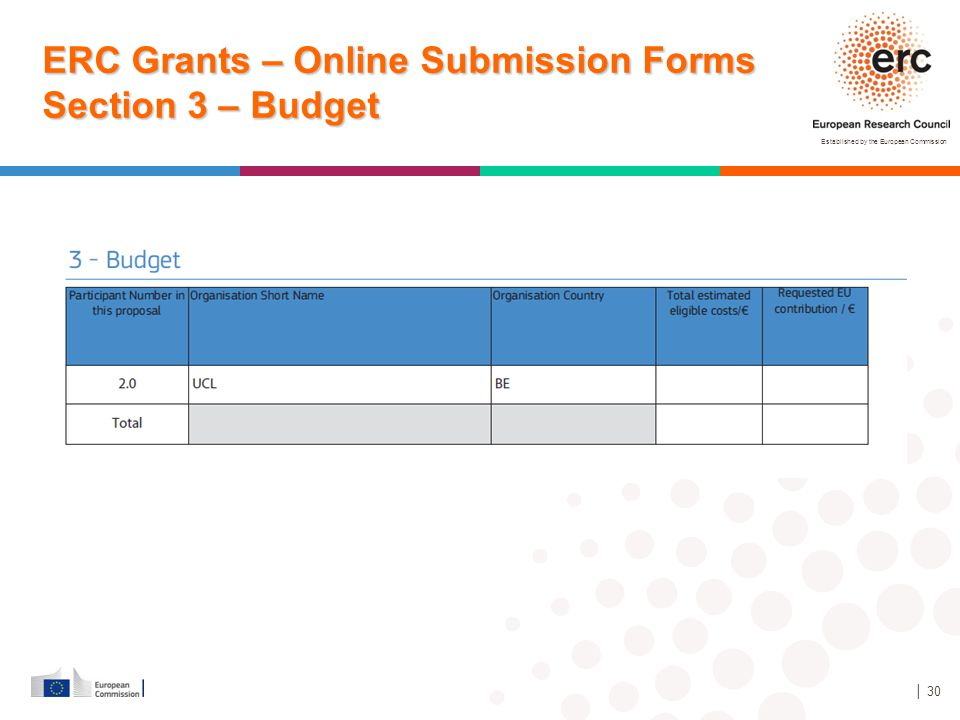 ERC Grants – Online Submission Forms Section 3 – Budget