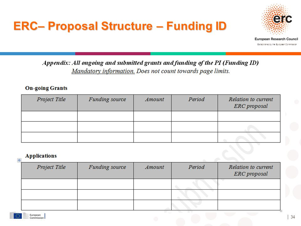 ERC– Proposal Structure – Funding ID