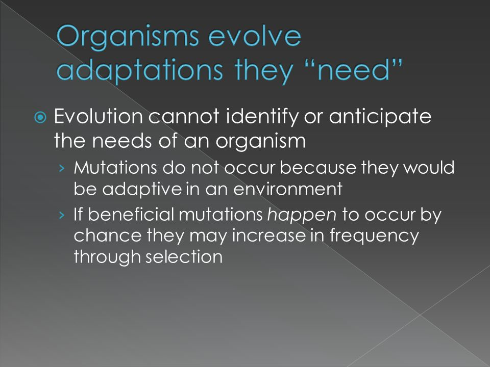 Organisms evolve adaptations they need