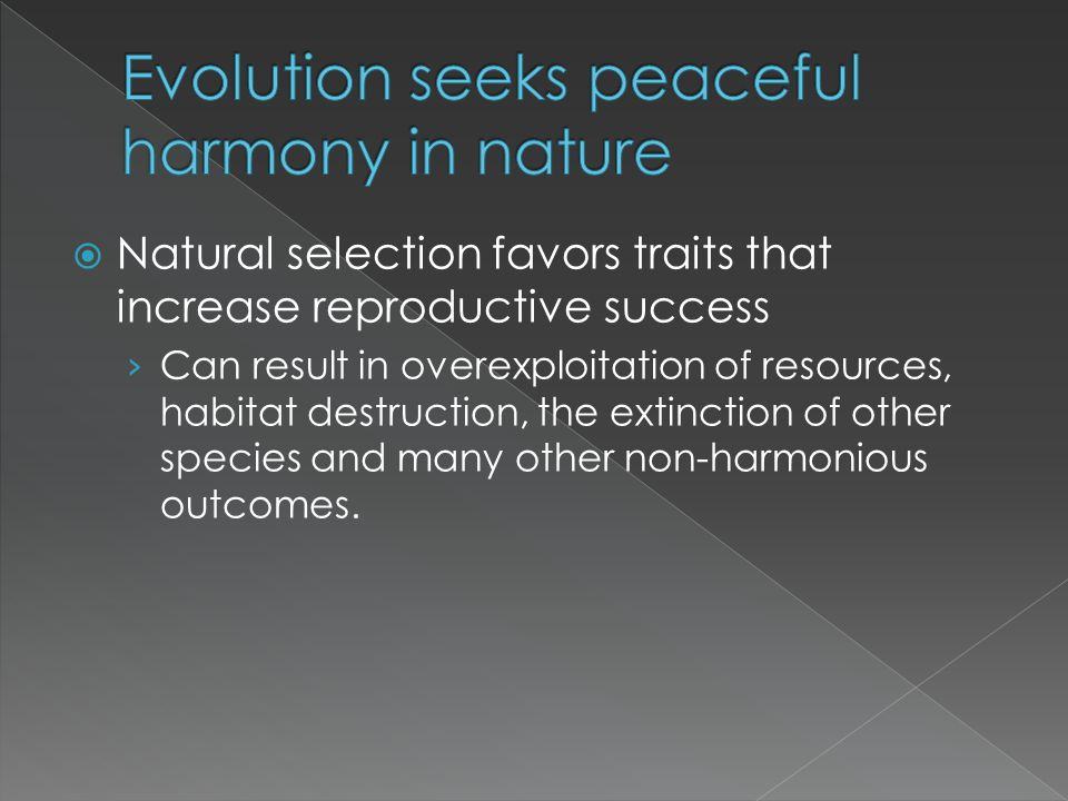 Evolution seeks peaceful harmony in nature