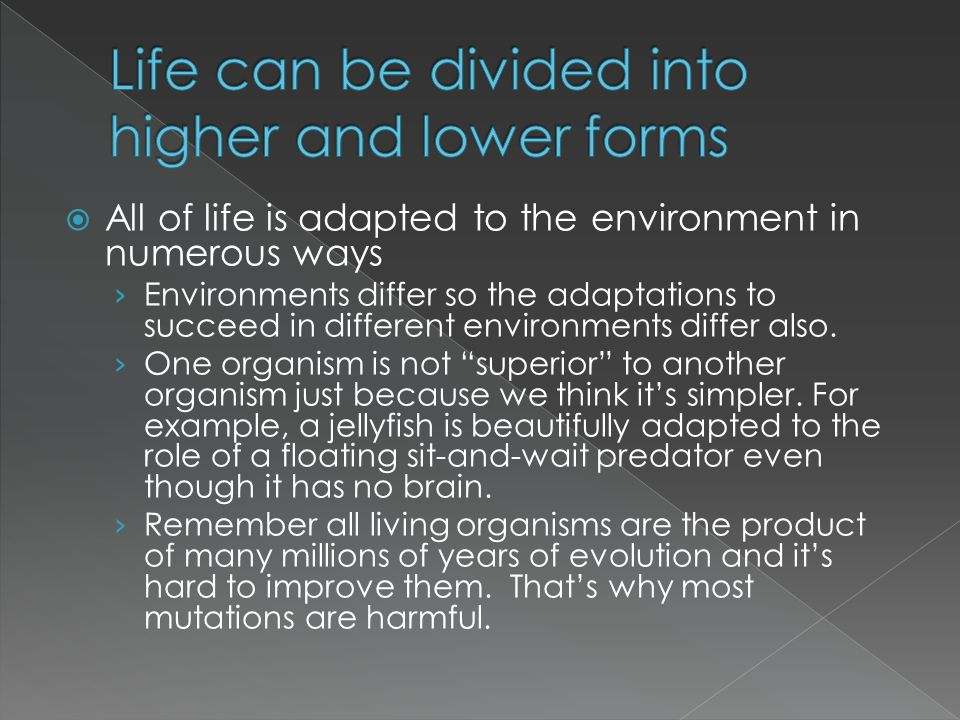 Life can be divided into higher and lower forms