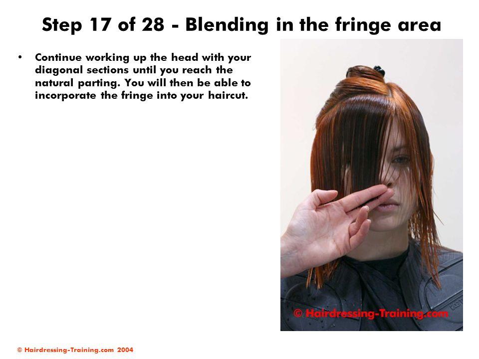 Step 17 of 28 - Blending in the fringe area