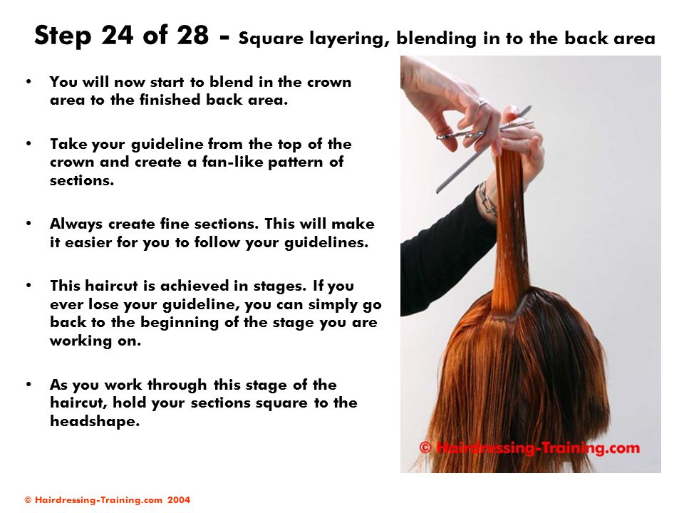 Step 24 of 28 - Square layering, blending in to the back area