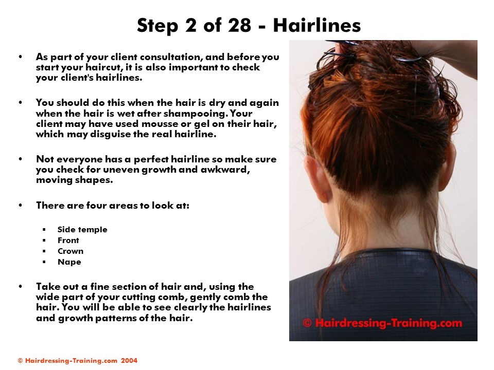 Step 2 of 28 - Hairlines
