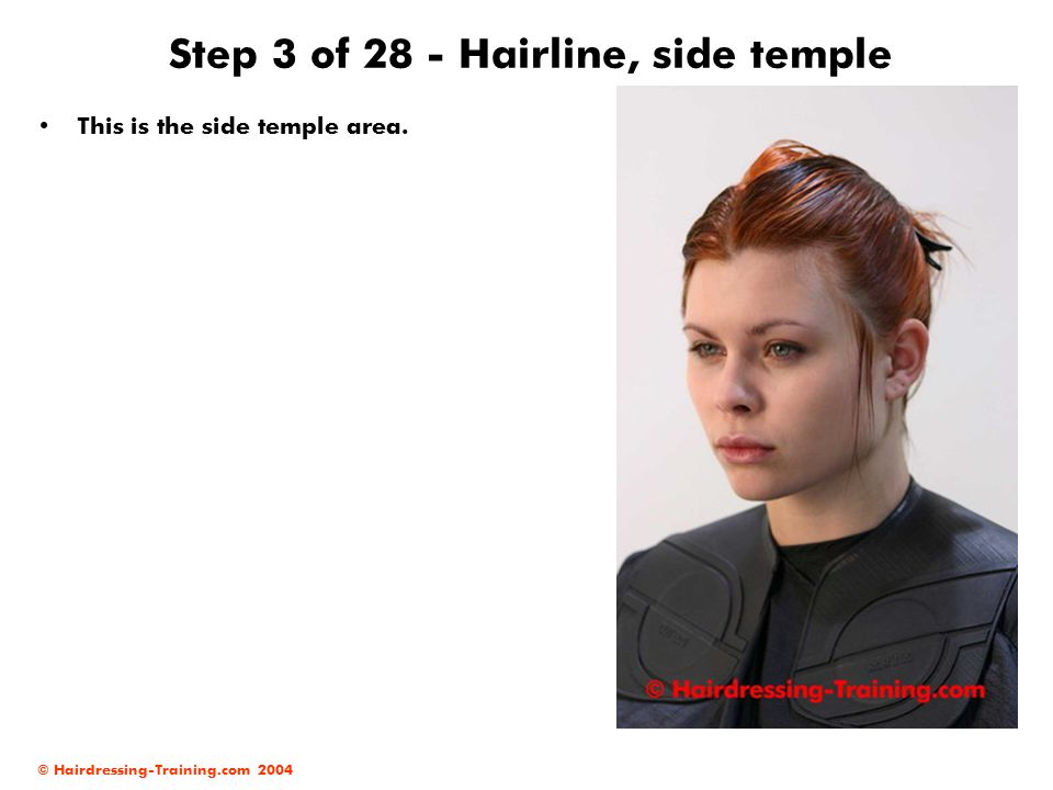Step 3 of 28 - Hairline, side temple