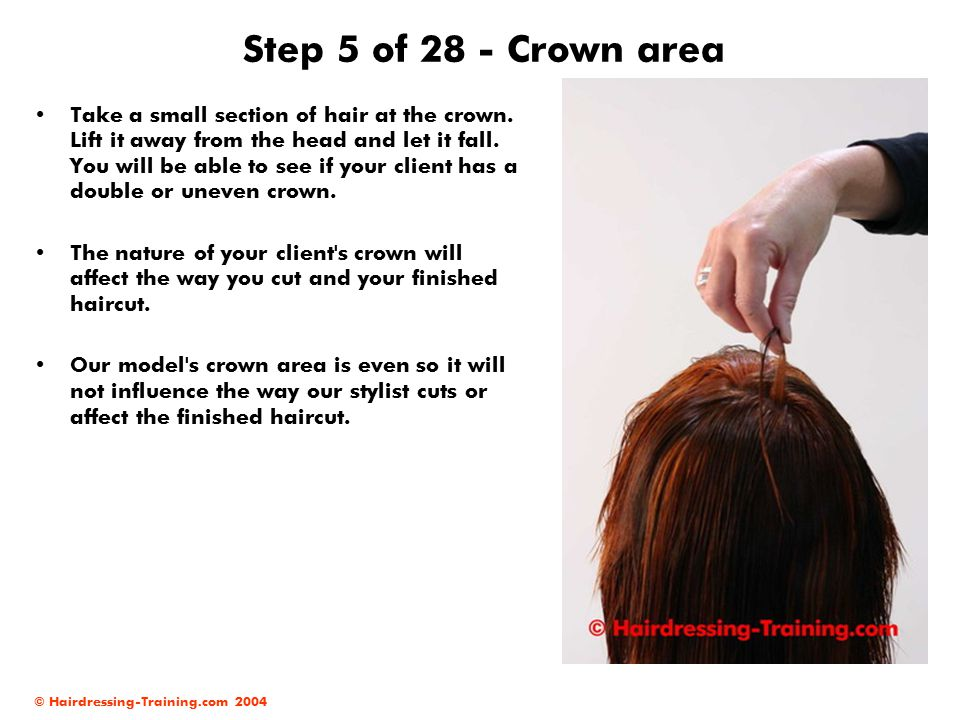 Step 5 of 28 - Crown area