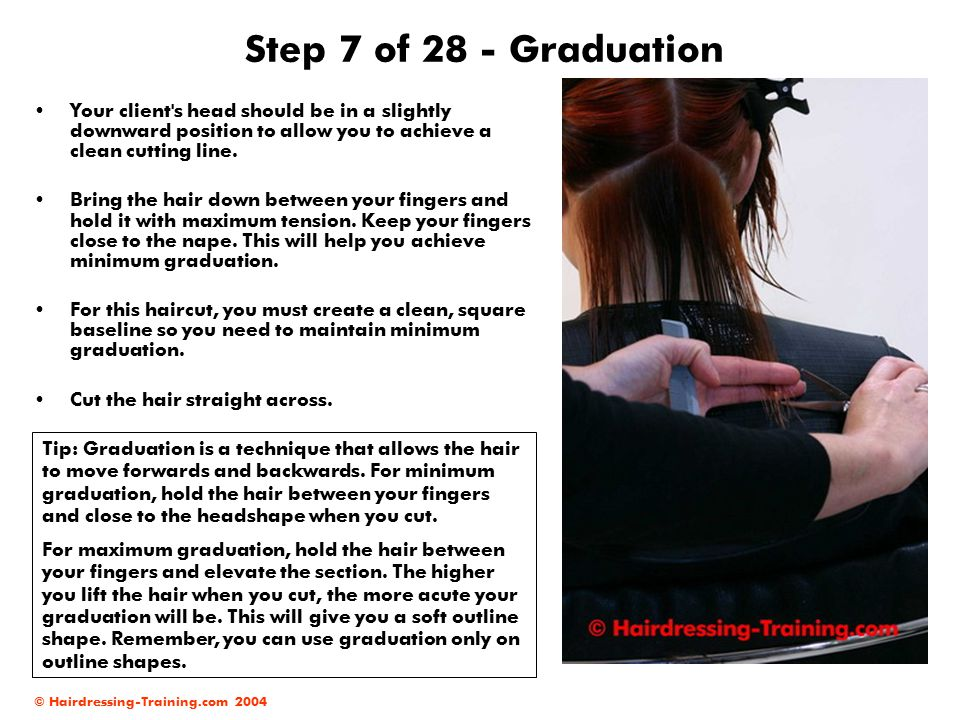 Step 7 of 28 - Graduation Your client s head should be in a slightly downward position to allow you to achieve a clean cutting line.