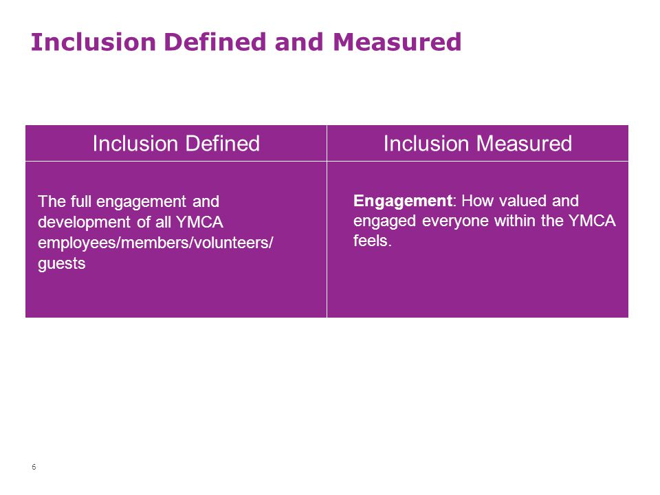 Inclusion Defined and Measured