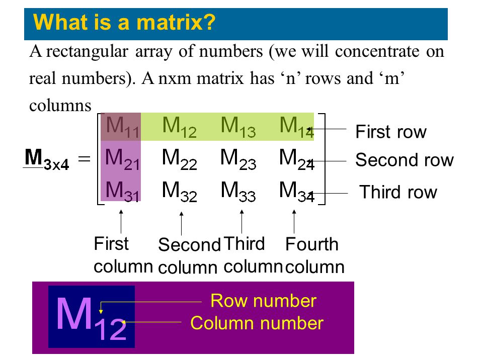 What is a matrix A rectangular array of numbers (we will concentrate on. real numbers). A nxm matrix has 'n' rows and 'm'
