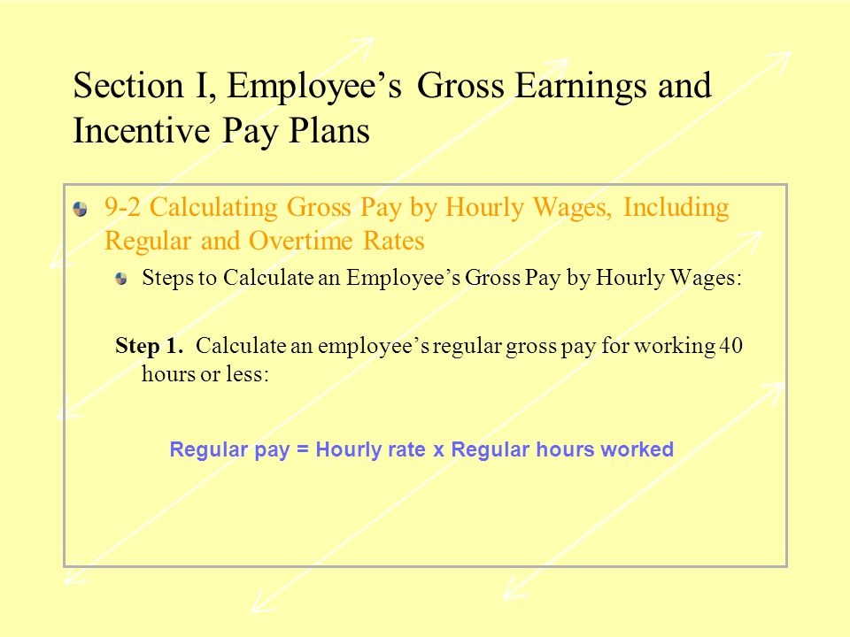 Section I, Employee's Gross Earnings and Incentive Pay Plans