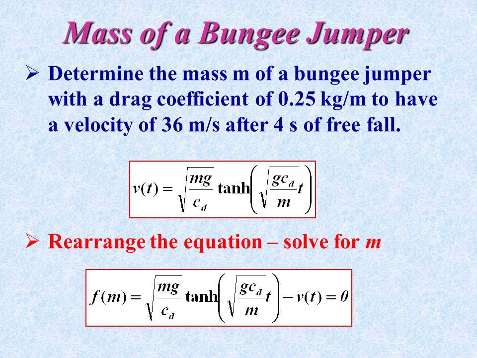 Mass of a Bungee Jumper
