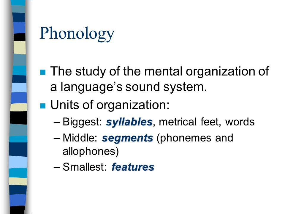 Phonology The study of the mental organization of a language's sound system. Units of organization: