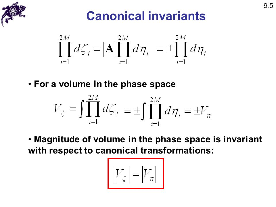 Canonical invariants For a volume in the phase space