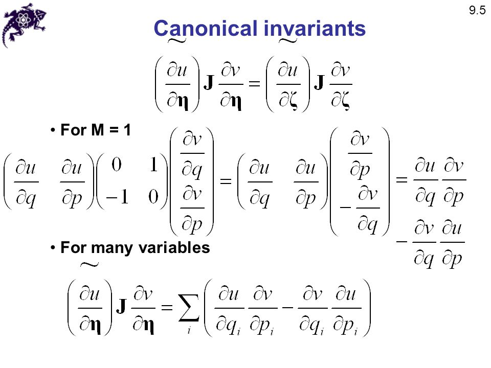 9.5 Canonical invariants For M = 1 For many variables