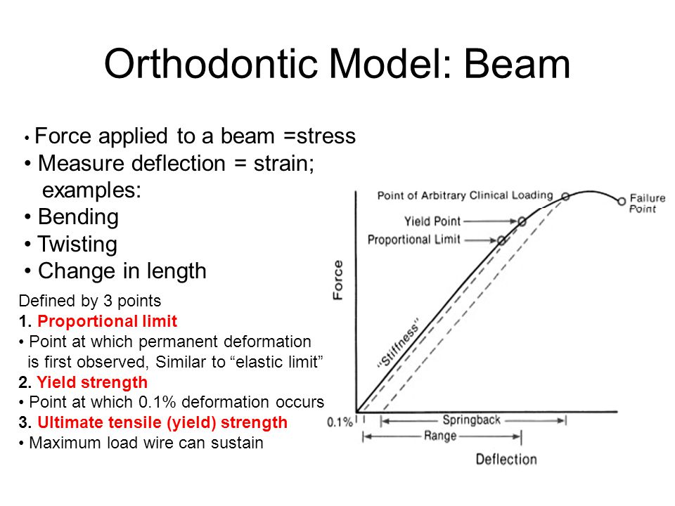 Orthodontic Model: Beam