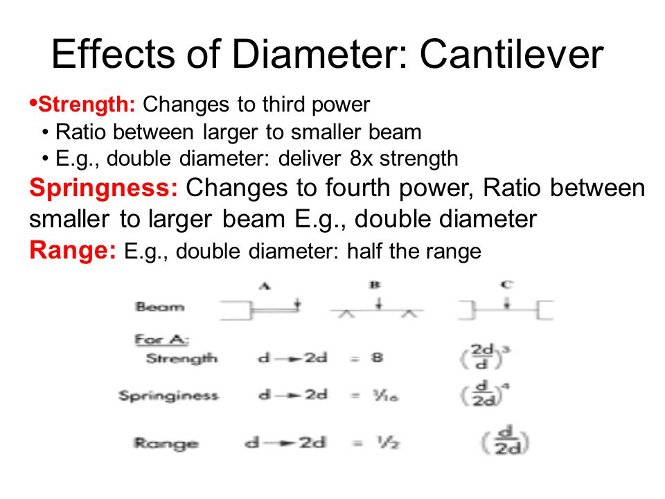 Effects of Diameter: Cantilever