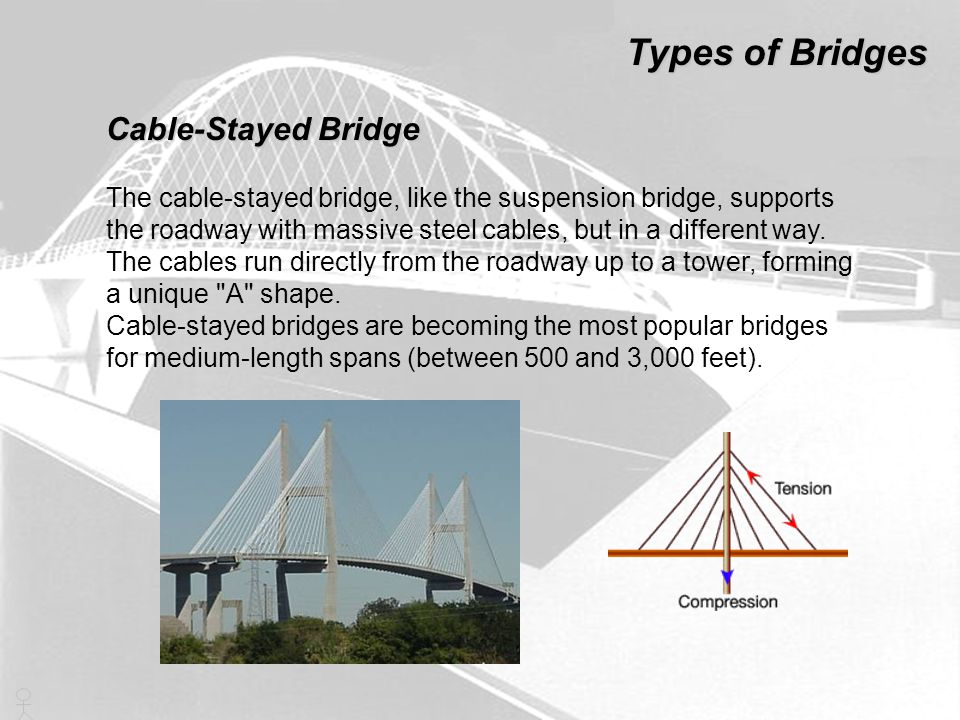 Types of Bridges Cable-Stayed Bridge