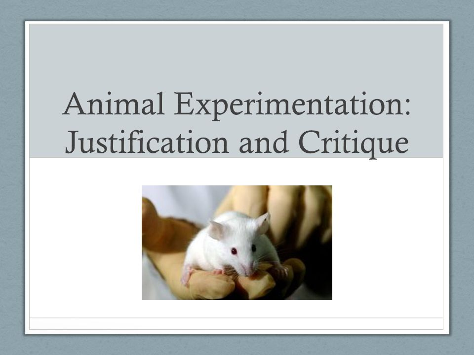 Animal Experimentation: Justification and Critique