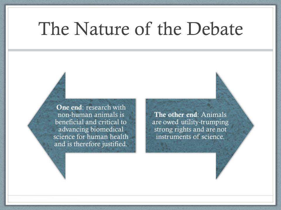 The Nature of the Debate