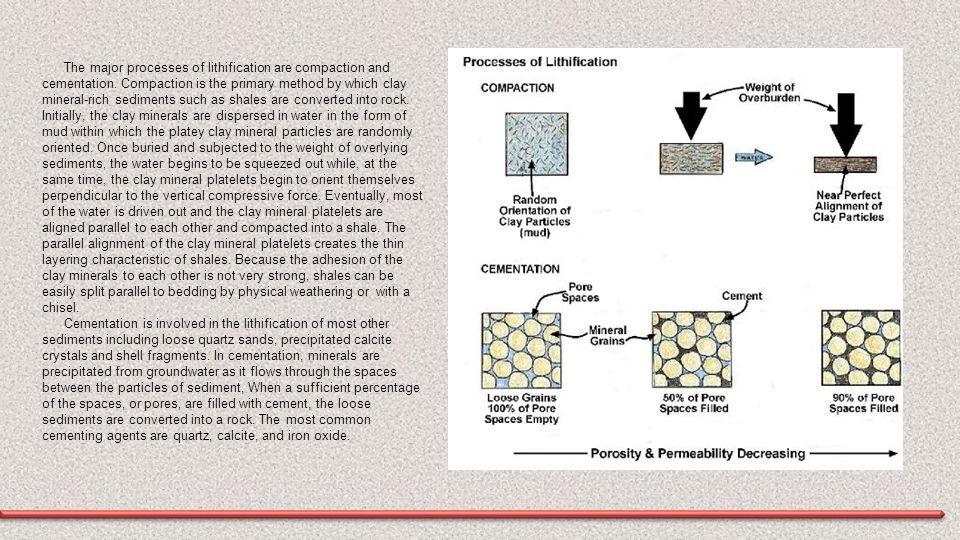 The major processes of lithification are compaction and cementation
