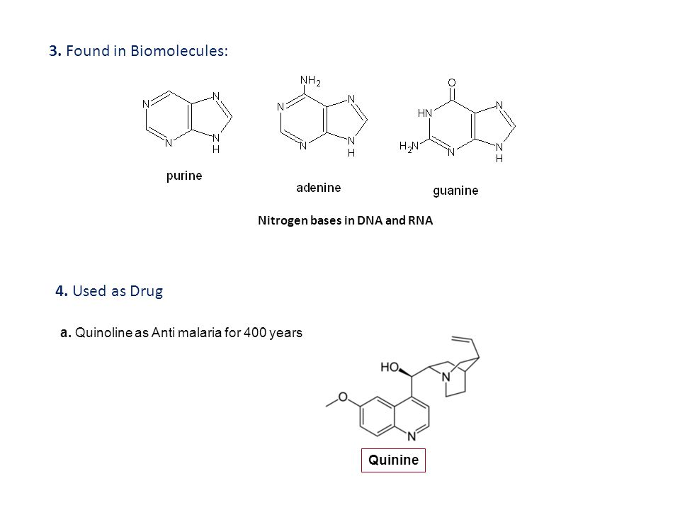 3. Found in Biomolecules: