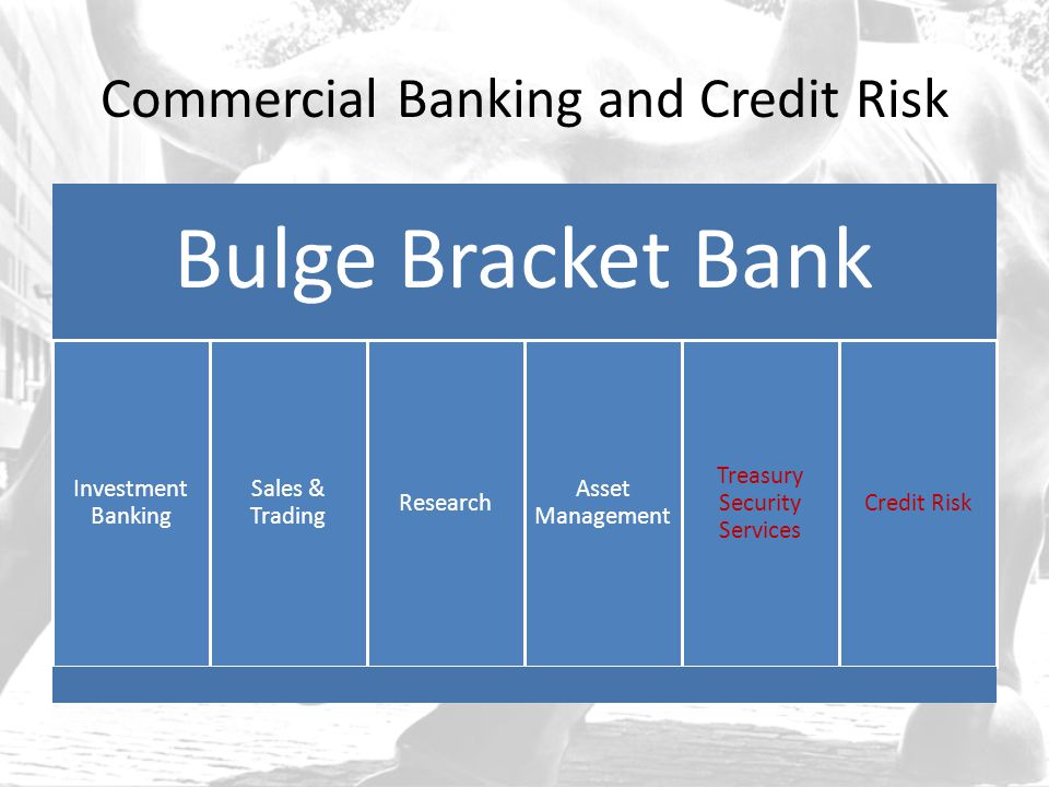 Commercial Banking and Credit Risk