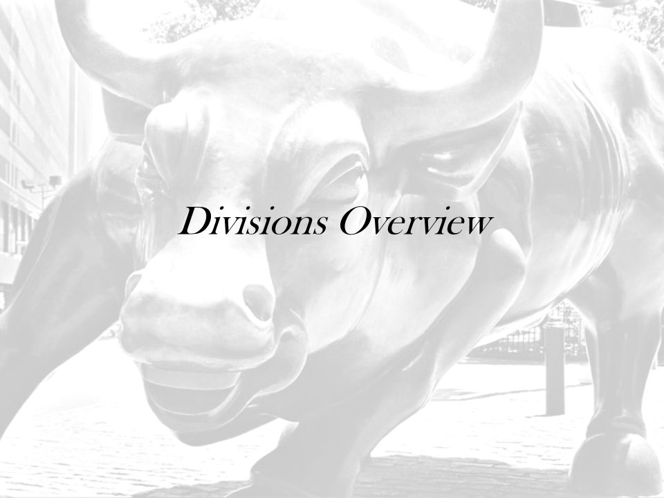 Divisions Overview