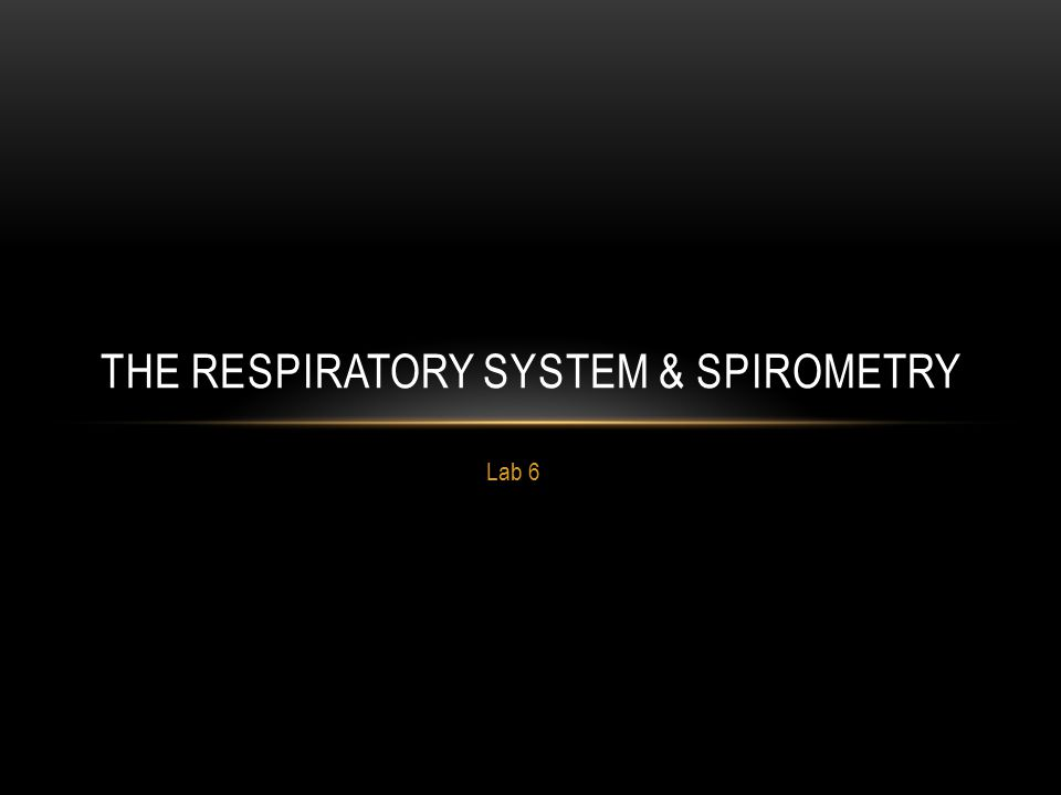 The Respiratory System & Spirometry