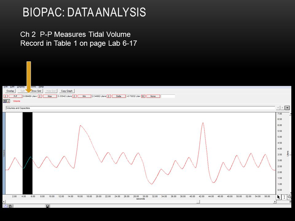 Biopac: Data Analysis Ch 2 P-P Measures Tidal Volume