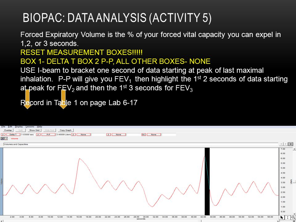 Biopac: Data Analysis (Activity 5)