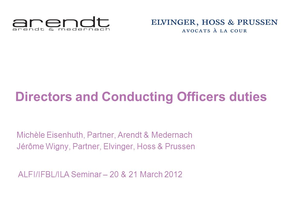Directors and Conducting Officers duties