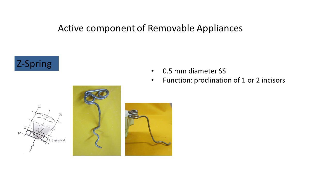 Active component of Removable Appliances