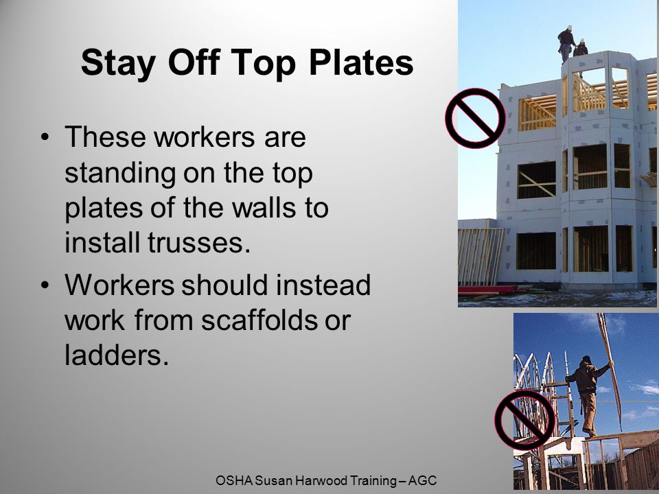 Stay Off Top Plates These workers are standing on the top plates of the walls to install trusses.